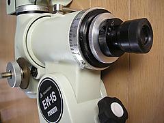 Dscn7881mus