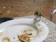 グリーン島の鳥 その2