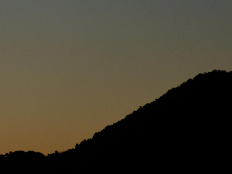 11/24のアイソン彗星